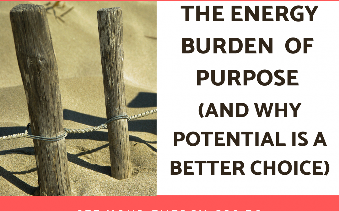 From Purpose to Potential