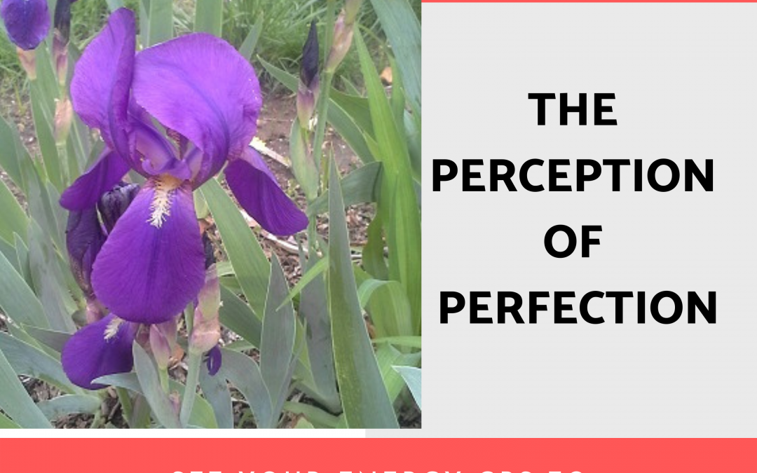 Perception of Perfection